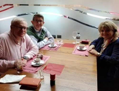 GB School – Language Consulting 公司和 NORAK 集团巩固合作关系